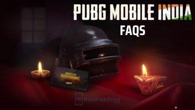 PUBG Mobile India FAQS