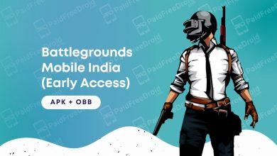Battlegrounds Mobile India Early Access Open Beta APK OBB