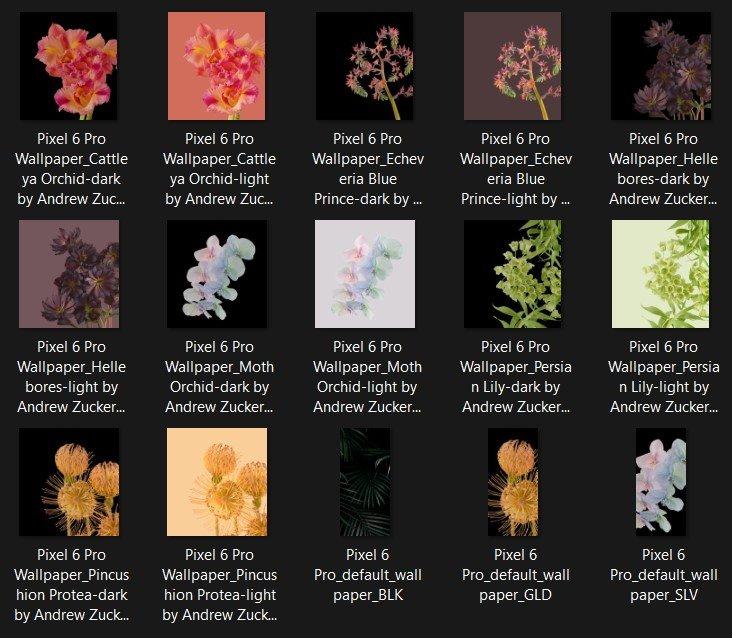 Pixel 6 Pro Wallpapers